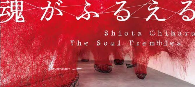 塩田千春展『魂がふるえる』関連プログラム / パフォーミング・アーツ・プログラム「美術と演劇:くちないし」